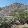 Verrado Ridge, Arizona