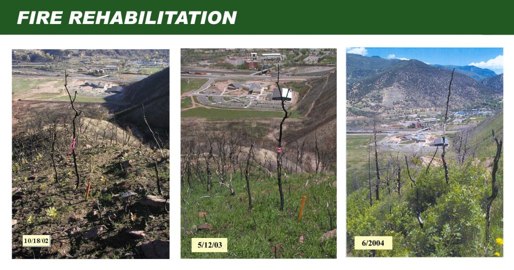 Coal Seal fire rehabilitation, burned out soil, hydrophobic, Biosol Mix