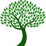 Green Tree2