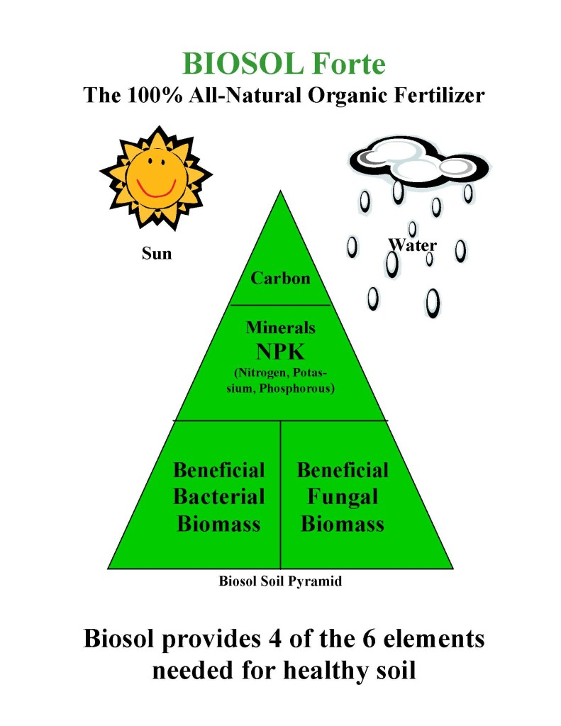 Biosol Forte Soil Pyramid
