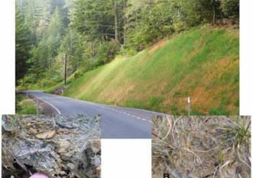 Agness Illahe FHWA Road, Oregon