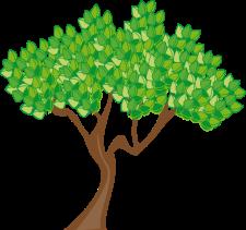 Green summer-tree