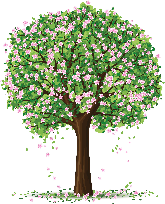 Image Result For Grfertilizer For Spring
